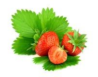 Красные изолированные ягоды клубники с листьями, Стоковые Фото