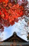 Красные листья перед японским виском с предпосылкой облачного неба стоковое фото rf