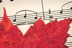 Красные лист на винтажной музыке Стоковая Фотография