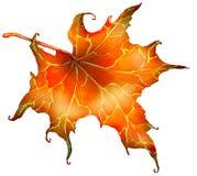 Красные лист осени иллюстрация вектора