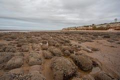 Красные и белые скалы известняка Hunstanton, Норфолка r стоковая фотография