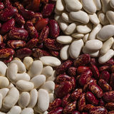 Красные и белые фасоли в предпосылке Стоковая Фотография RF