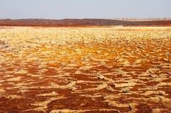 Красные и желтые депозиты серы ядовитой фантастической пустыни Danakil, Afar таза, севера Эфиопии Стоковые Изображения