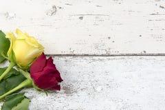 Красные и желтые розы на белой деревянной предпосылке влияния Стоковое Изображение RF