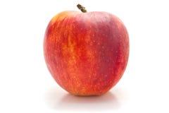 Красные и желтые яблоки Стоковое фото RF