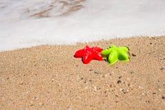 Красные и зеленые в форме морск прессформы на песке Стоковое Фото