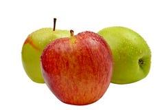 Красные и зеленые изолированные яблоки Стоковые Фотографии RF