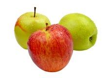 Красные и зеленые изолированные яблоки Стоковое фото RF