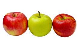 Красные и зеленые изолированные яблоки Стоковые Фото