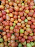 Красные и зеленые томаты Стоковое фото RF