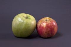 Красные и зеленые яблоки Стоковая Фотография