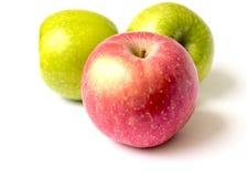 Красные и зеленые яблоки Стоковые Фото