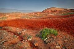 Красные каньоны пустыни Стоковые Фотографии RF