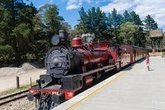 Красные кареты поезда пара Стоковые Фотографии RF