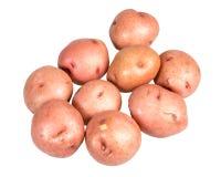 Красные картошки изолированные на белизне Стоковая Фотография