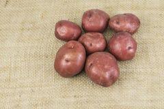 Красные картошки кожи Стоковые Изображения RF