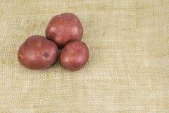 Красные картошки кожи Стоковое фото RF