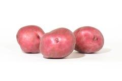 Красные картошки на белизне Стоковые Изображения