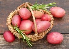 Красные картошки Стоковое Изображение RF