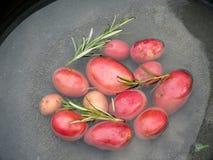 Красные картошки Стоковое фото RF