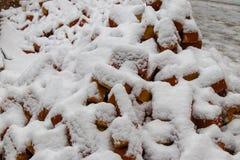 Красные кирпичи покрытые со снегом стоковые изображения rf