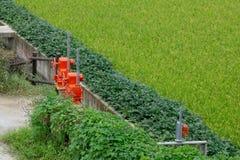 Красные клапаны строба воды для оросительной системы в неочищенных рисах field стоковая фотография rf