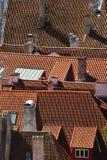 Красные крыши городка Таллина старого, Эстонии Стоковое фото RF