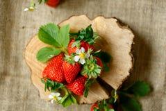 Красные клубники на древесине с цветением Стоковое Изображение