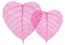 Красные листья сердца, вектор Стоковое Изображение