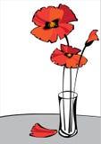 Красные маки в вазе изолированной на белой предпосылке Стоковые Фотографии RF