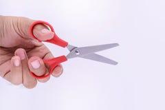 Красные малые ножницы в руке Стоковая Фотография