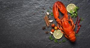 Красные морепродукты омара с космосом экземпляра взгляда сверху backgroud стоковое изображение