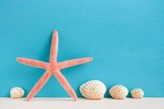 Красные морские звёзды и seashells стоя на бежевой поверхности на turquois Стоковые Изображения RF