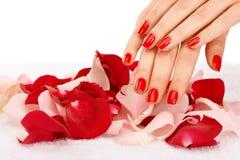 Красные ногти Стоковое Изображение RF