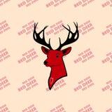 Красные олени и живая природа в руках хороших человеков Природа влюбленности Стоковые Фото