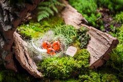 Красные пасхальные яйца в гнезде с пер стоковые изображения rf