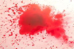 Красные падения на белизне Стоковое Изображение RF