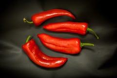 Красные перцы на черной предпосылке Стоковое Изображение RF