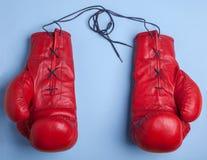 Красные перчатки бокса изолированные на голубой предпосылке Стоковые Изображения