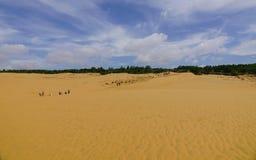 Красные песчанные дюны в Ne Mui, Вьетнам Стоковая Фотография RF