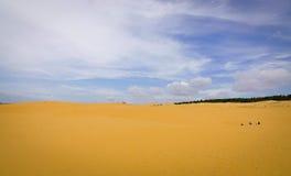 Красные песчанные дюны в Ne Mui, Вьетнам Стоковые Изображения RF