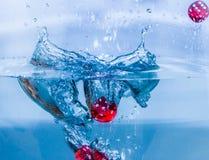 Красные плашки Стоковая Фотография RF