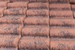 Красные плитки Стоковые Изображения RF