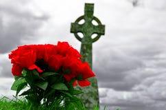 Красные (поддельные) розы Стоковые Изображения