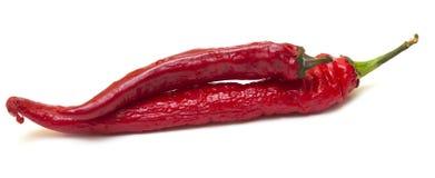 Красные пряные перцы на белой предпосылке Стоковые Фотографии RF