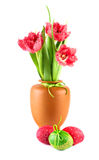 Красные пушистые тюльпаны и покрашенные пасхальные яйца на белизне Стоковое Изображение