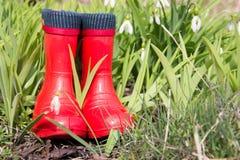 Красные резиновые ботинки на предпосылке snowdrops Стоковые Фото