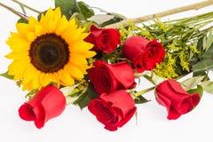 Красные розы и солнцецвет стоковое фото rf