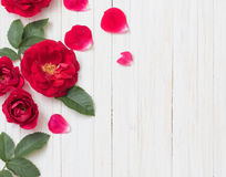 Красные розы на деревянной предпосылке Стоковая Фотография RF