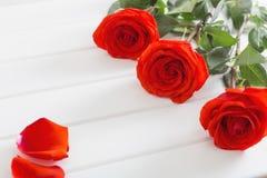 Красные розы на деревянной предпосылке планок Стоковые Изображения